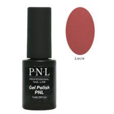 pnl008